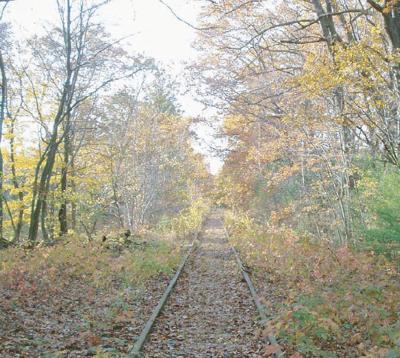 Wakefield-Lynnfield Rail Trail is full steam ahead