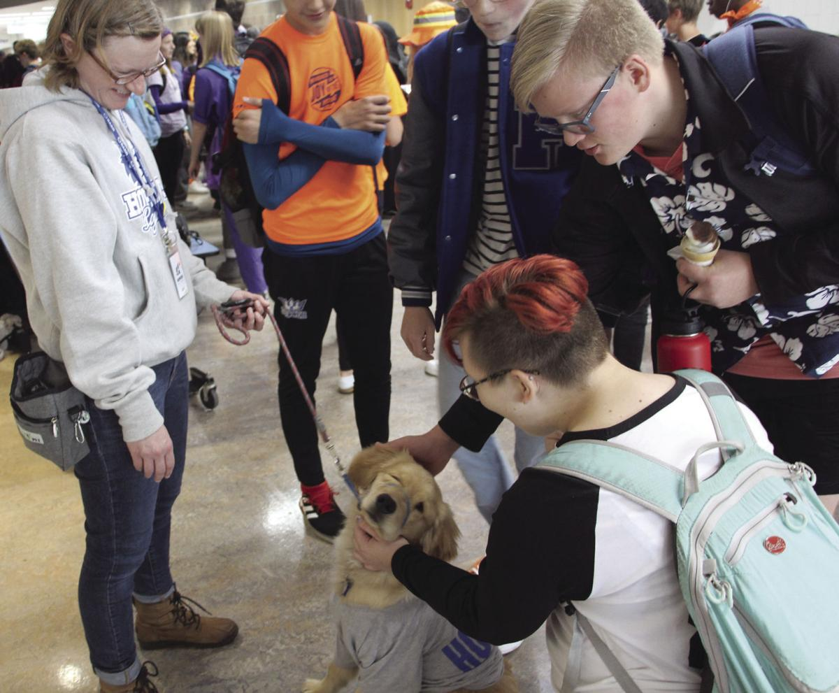Hopkins students pet Wilma