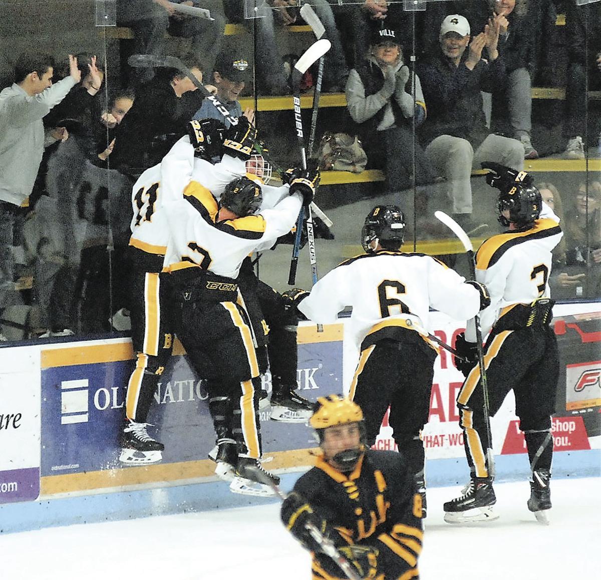 Boys hockey playoffs: Cougars, Irish gain top seeds