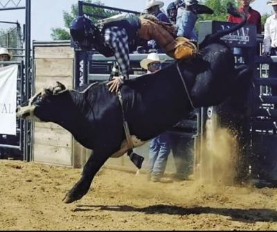 Sports P Bull rider heads to nationals.jpg