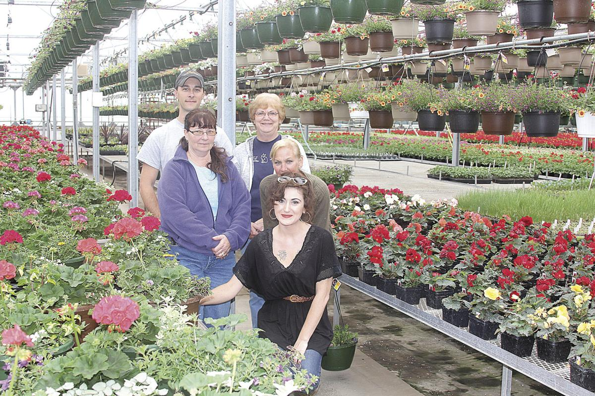 longhorn valley greenhouse goes retail and they have something