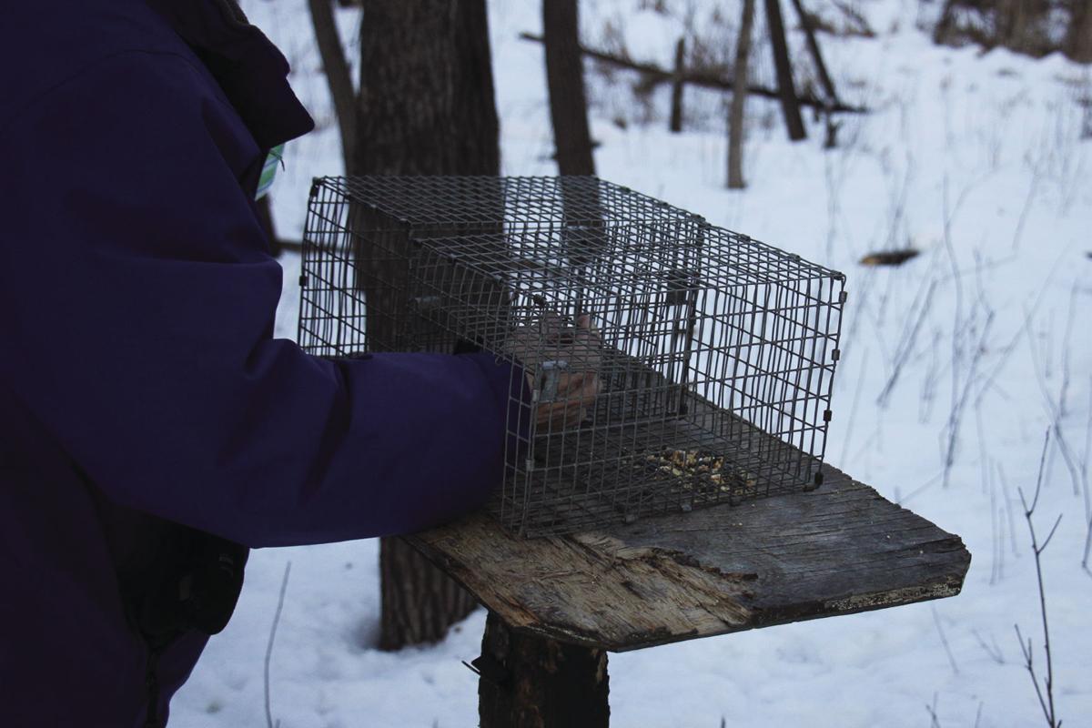 FR bird banding UHL 2 cmyk.jpg
