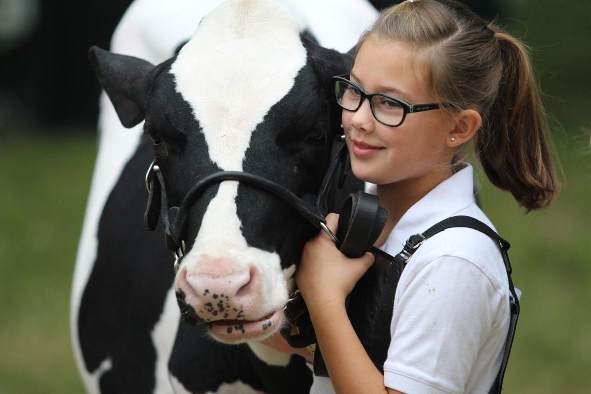 4-H Dairy 0001.JPG