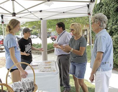 Ice cream on a warm summer day-Houston County Public Health