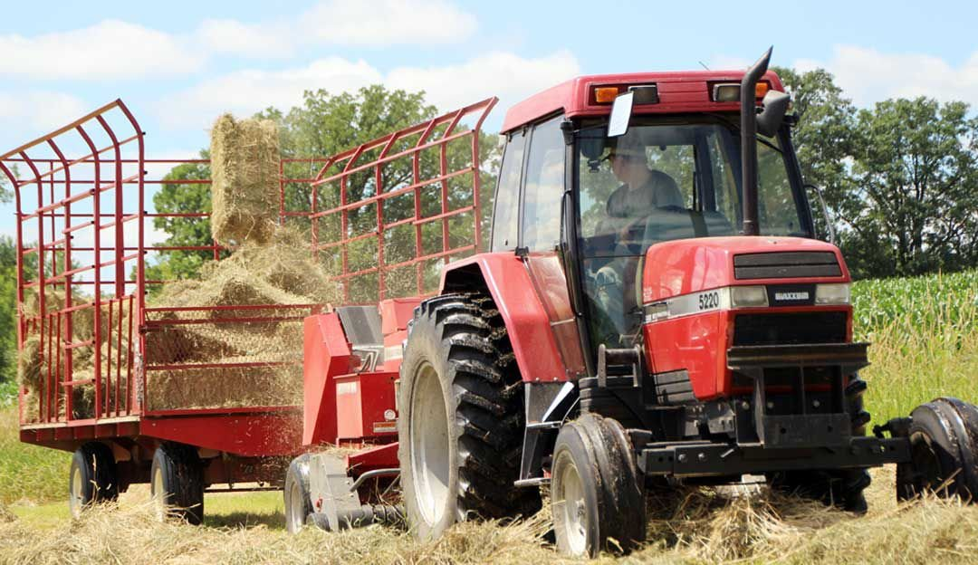 Young Pierz man carries on farming legacy