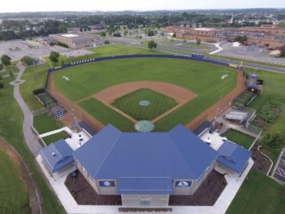 Lions Field.jpg