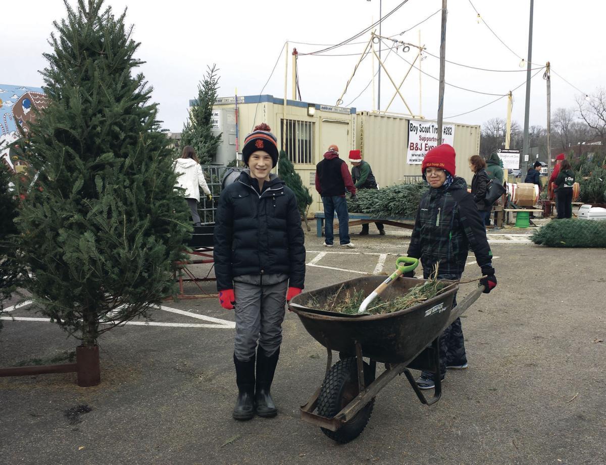 boy scouts christmas tree lot returns under a new arrangement in st louis park - Boy Scout Christmas Trees