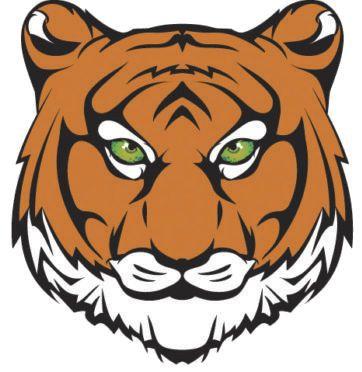 princeton tiger.psd