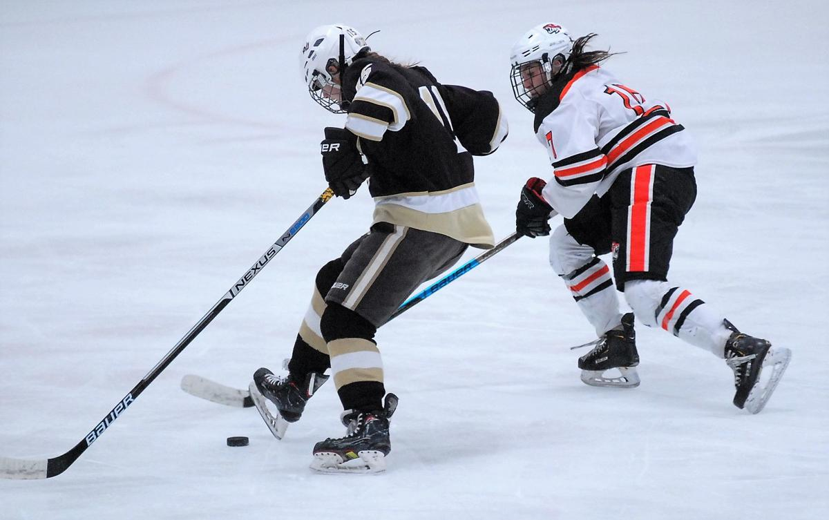 Tigers gain share of SSC girls hockey lead