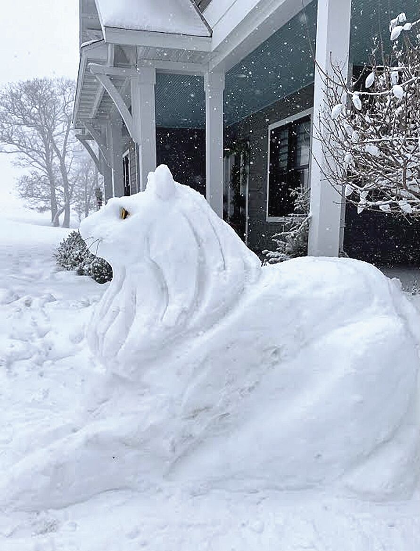 Snow lion-Renee Eiken