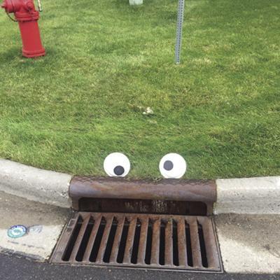 google eyed drain.jpg