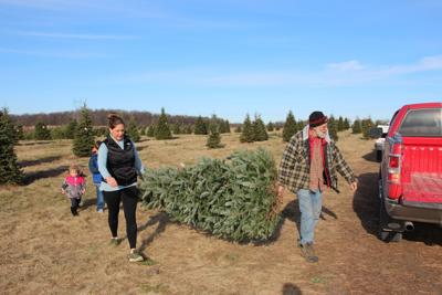 Z S Trees Takes Ax To Cut Your Own Service Ending A Tradition Community Hometownsource Com