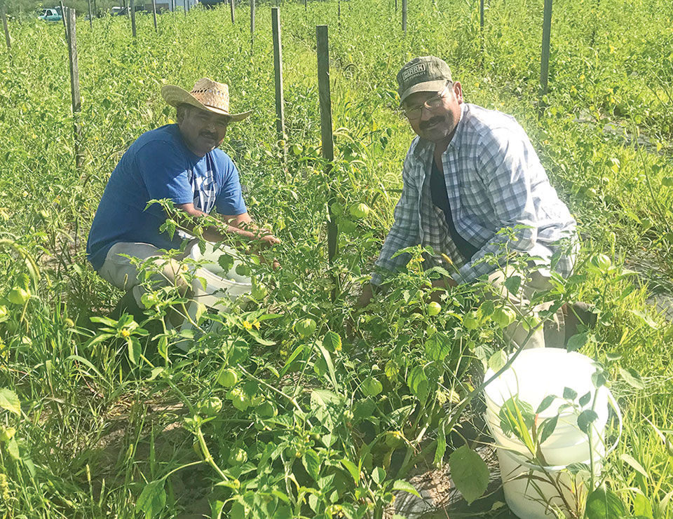 Agua Gorda Cooperative owners named 2019 'Todd County Farm Family of the Year'