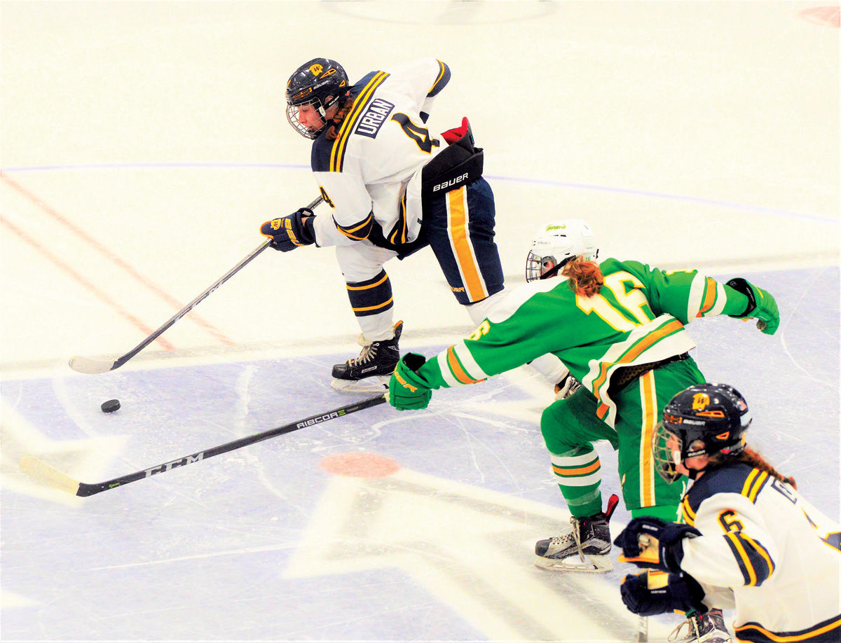 MN H.S.: Wayzata High Girls Hockey Loaded With Experience