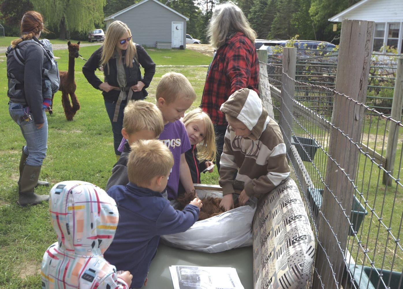 alpaca visit_1.jpg
