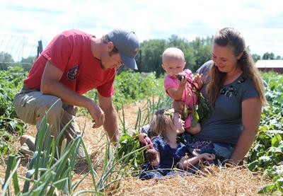 Organic farm in Randall opens garden for customers to pick their own fresh produce