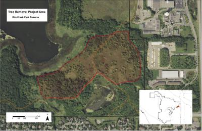 Champlin prairie restoration in progress