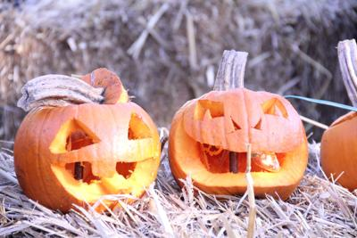 ank_pumpkin_carving_10.JPG (copy)