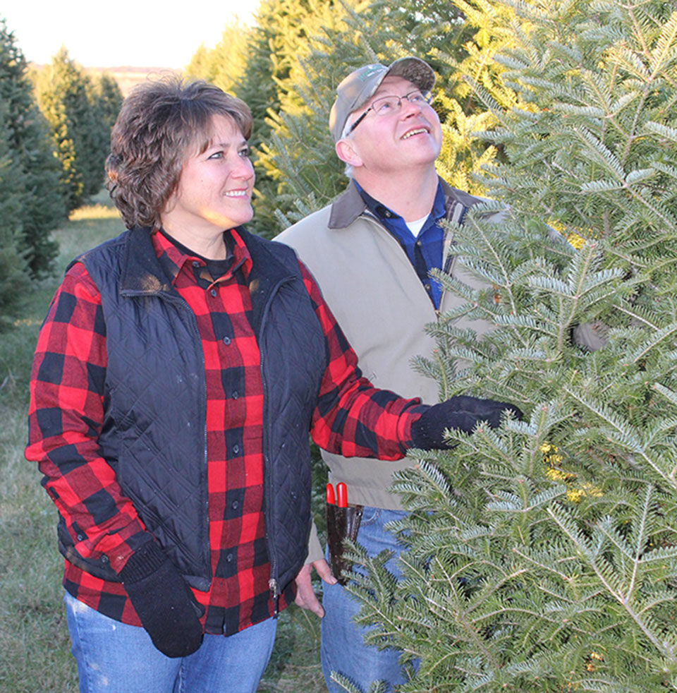 Frieler Farms: More than selling Christmas trees