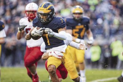 Lakeville North-Rosemount football game called off