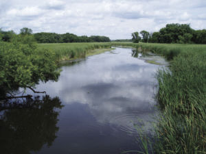 New subwatershed partnership to focus on Six Mile Creek, Halsted Bay