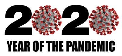 Year of pandemic image.jpg