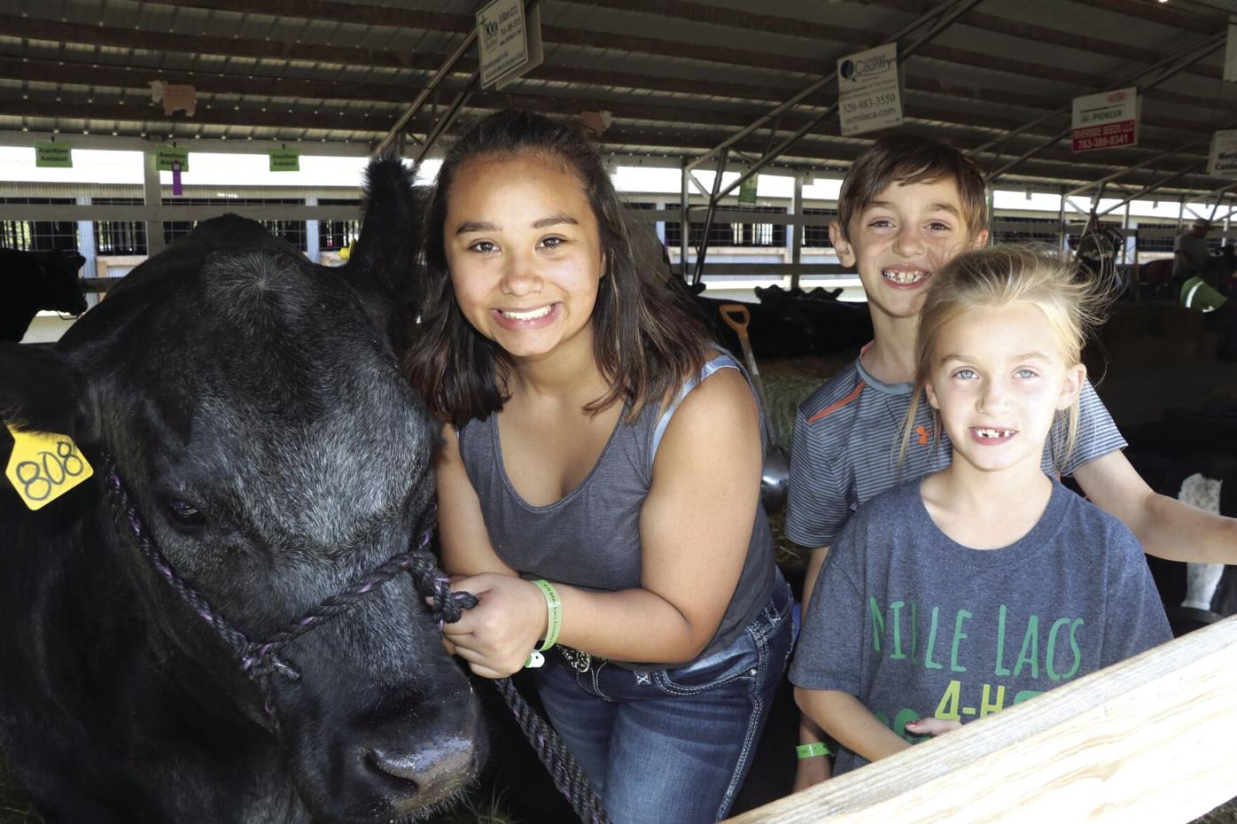Kids and blue cow.jpg