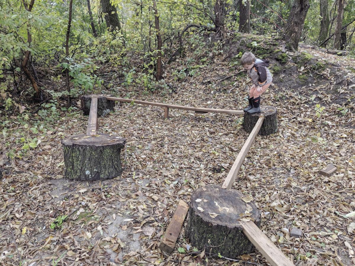 lv 10 acre wood 3 c.jpg