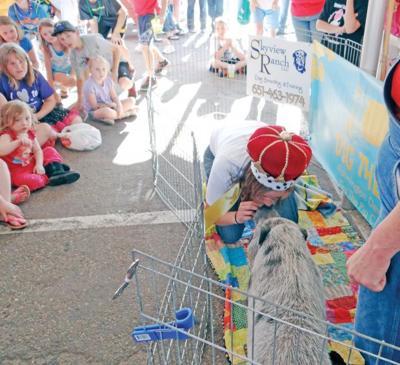 Summer festivals to shine in Farmington, Rosemount, Apple Valley