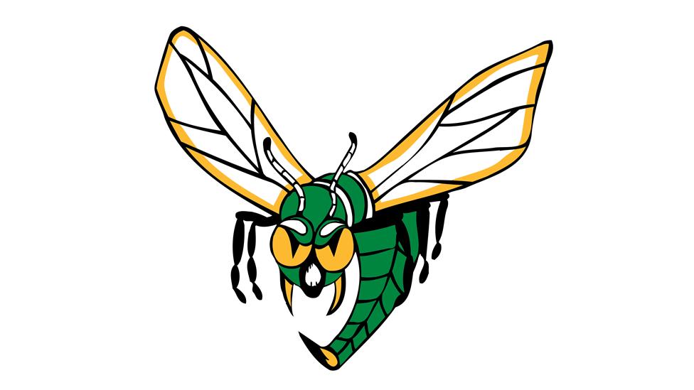 Edina school district faces dispute over use of Hornet logo | Edina |  hometownsource.com