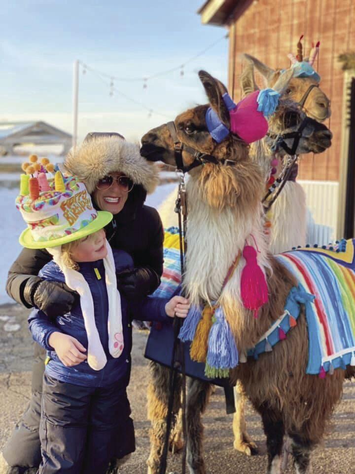 birthday llama.jpeg