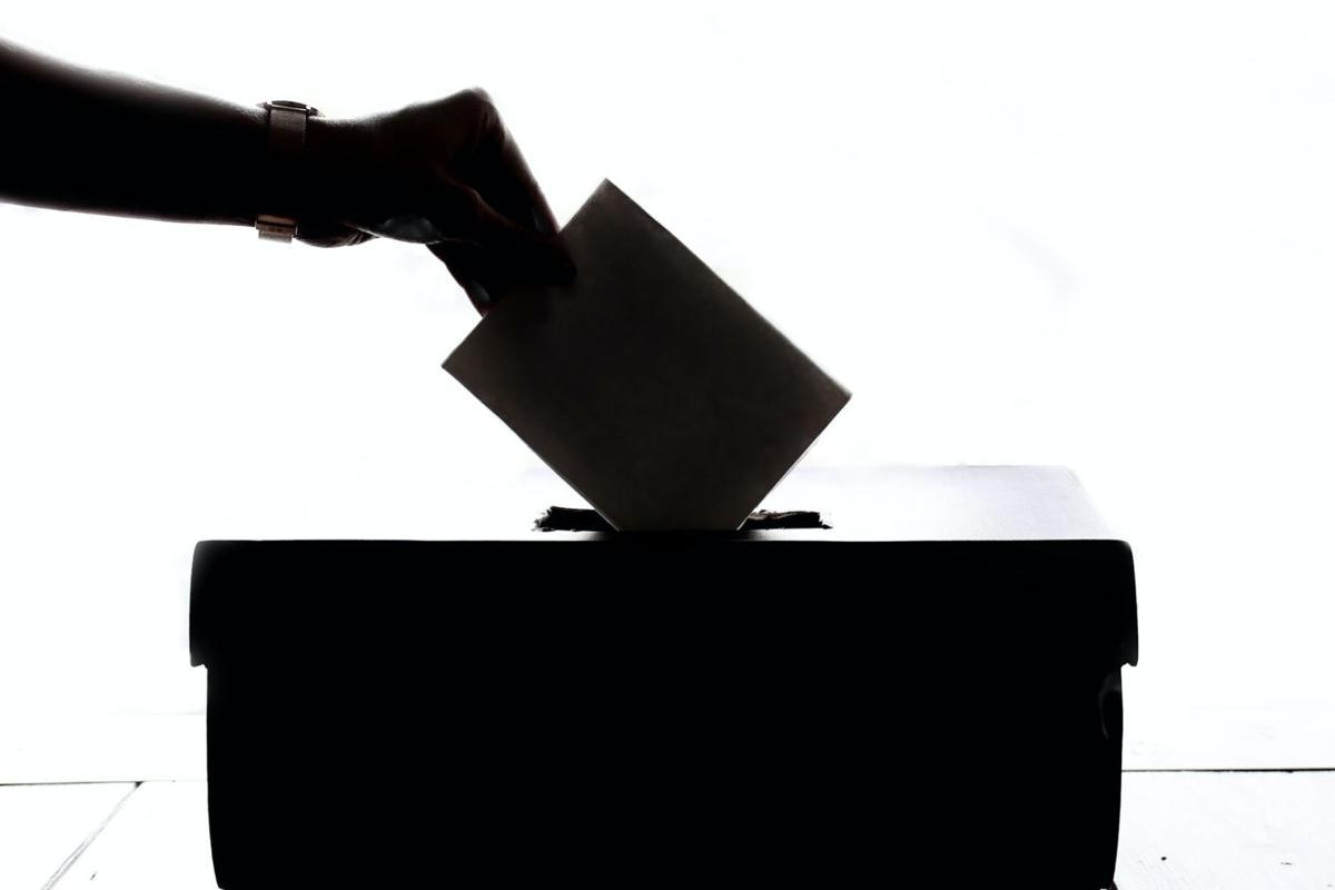 vote2020_2.jpg