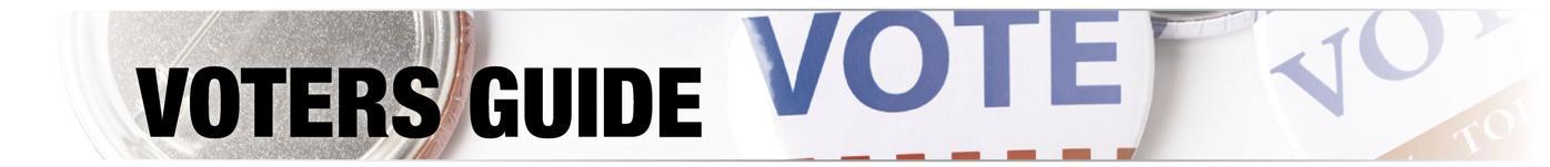 VotersGuideBannerCMYK.jpg