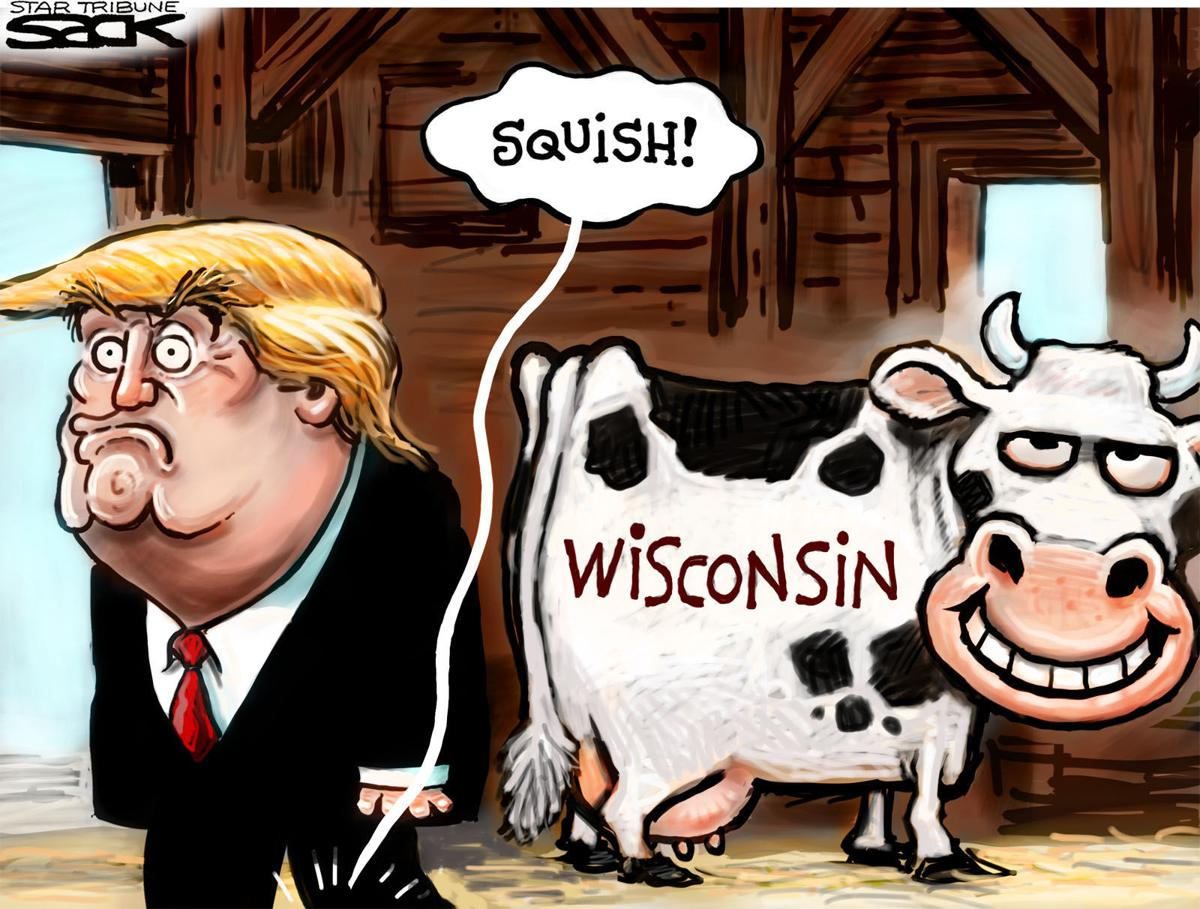donald trump steps in a wisconsin cow pie in steve sacks