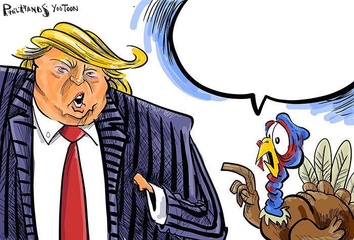 Turkey You Toon
