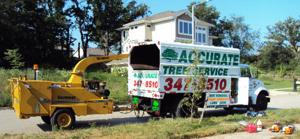 Accurate Tree Service