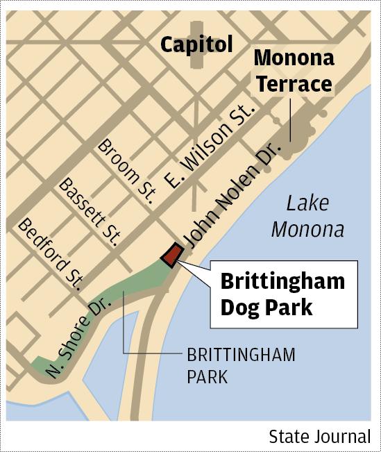 Brittingham Dog Park