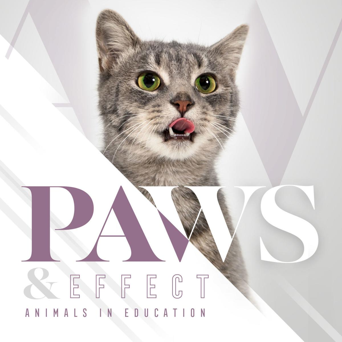 Paws & Effect Logo MADISON COLLEGE