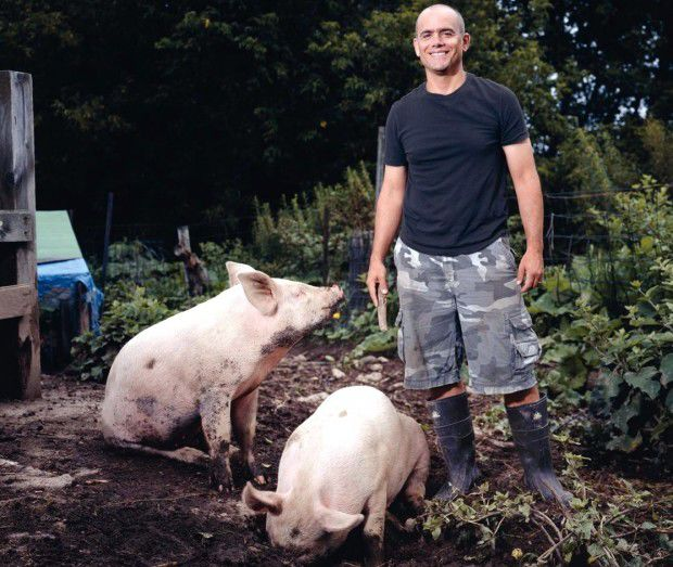 Michael Perry with pigs