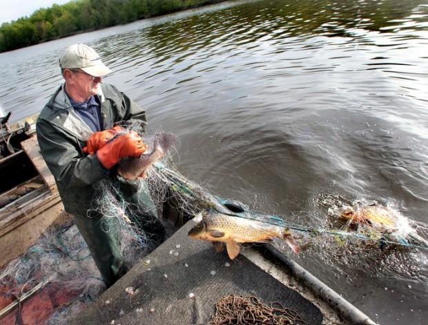For Commercial Fishermen Mississippi River Is Getting