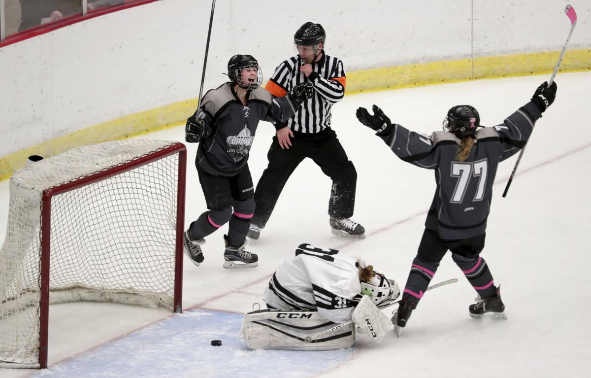 hockey photo 3-3