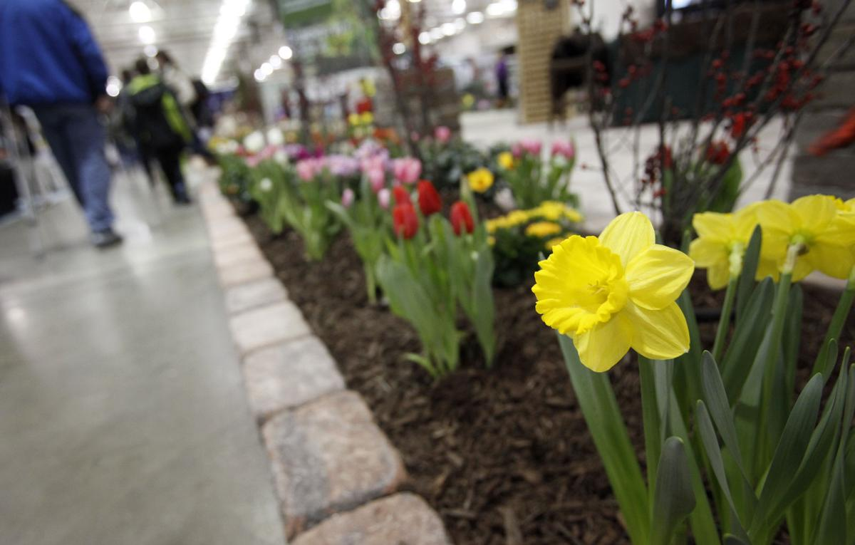 Going Out: Garden Expo returns for 23rd year | Entertainment | host ...