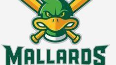 Mallards: Ryan Schmitt throws seven scoreless innings to beat Chinooks