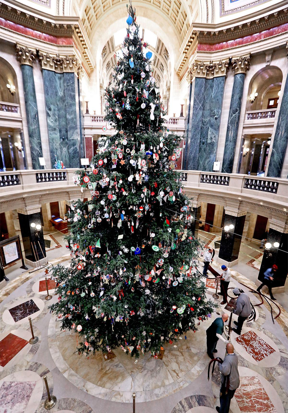 Wisconsin State Capitol Christmas Tree 2020 Wisconsin Capitol Christmas Tree 2020 Lighting | Kfdbbq