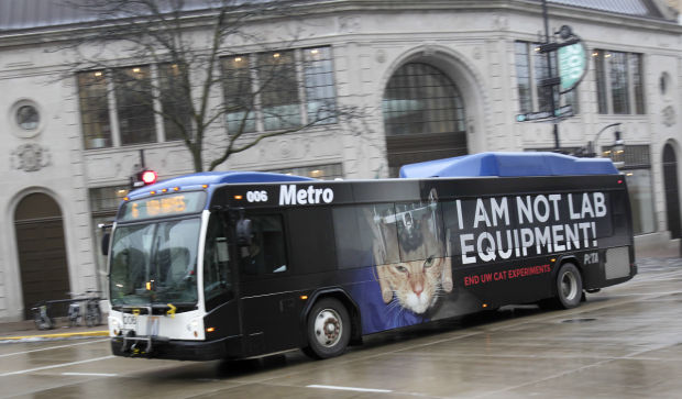 Peta protests animal research with ads on madison buses local metro bus with peta ad sciox Gallery