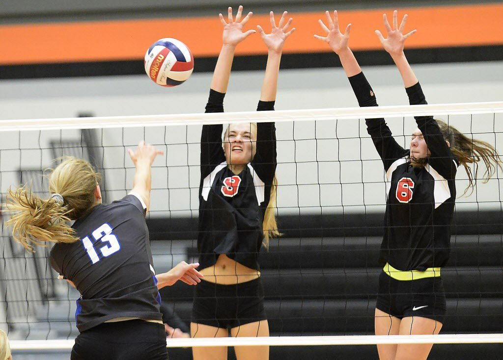 Badger South Conference girls volleyball photo