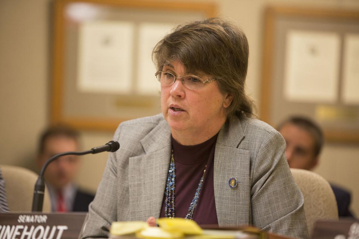 Kathleen Vinehout Kathleen Vinehout registers committee to run for governor Politics