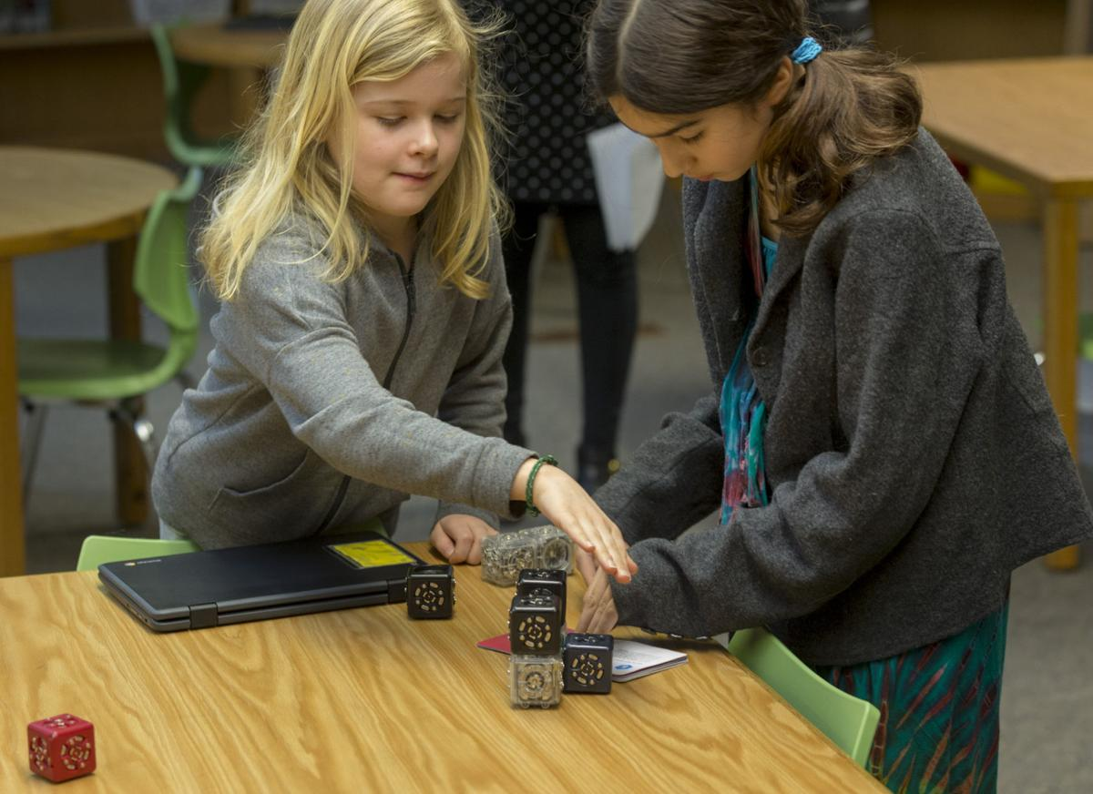 Students work with robots