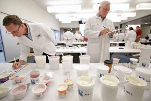 Swishing, spitting and evaluating at national dairy product contest at MATC