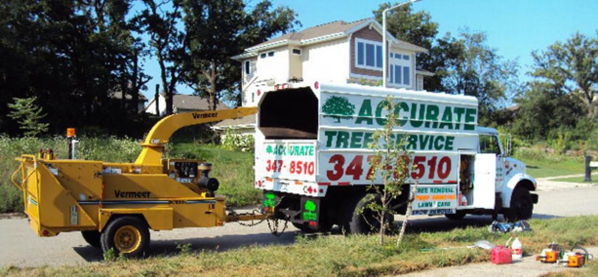 Need Tree Taming?